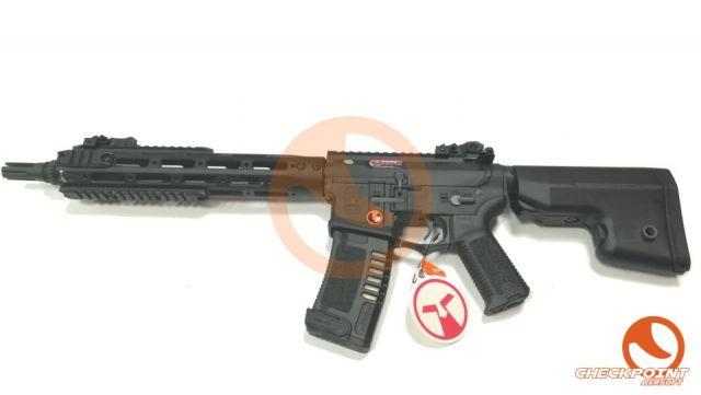 M4-CG-003 AMOEBA